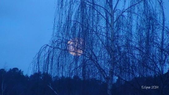 Full moon feb 2014 e