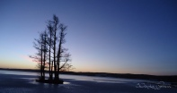 panorama of ice