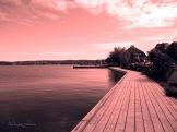 lake in pink
